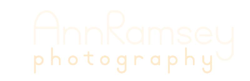 Ann L Ramsey